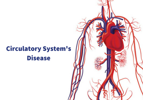 5 Diseases Associated With The Circulatory System