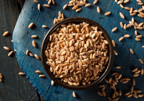 Gluten For Health - Here Is Farro For You!