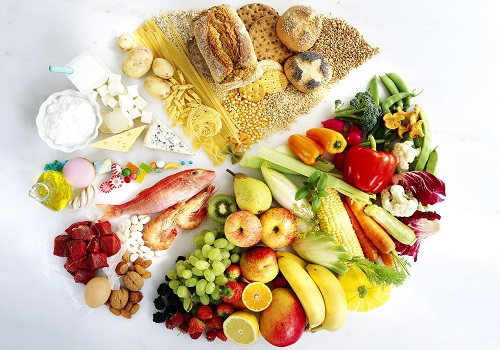 Know The Six Essential Nutrients In The Body